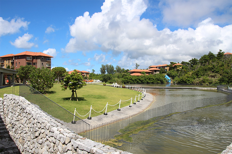 一般人にも開放!爽快な海カフェで学食ランチ、恩納村の高台に立つ沖縄科学技術大学院大学(OIST)