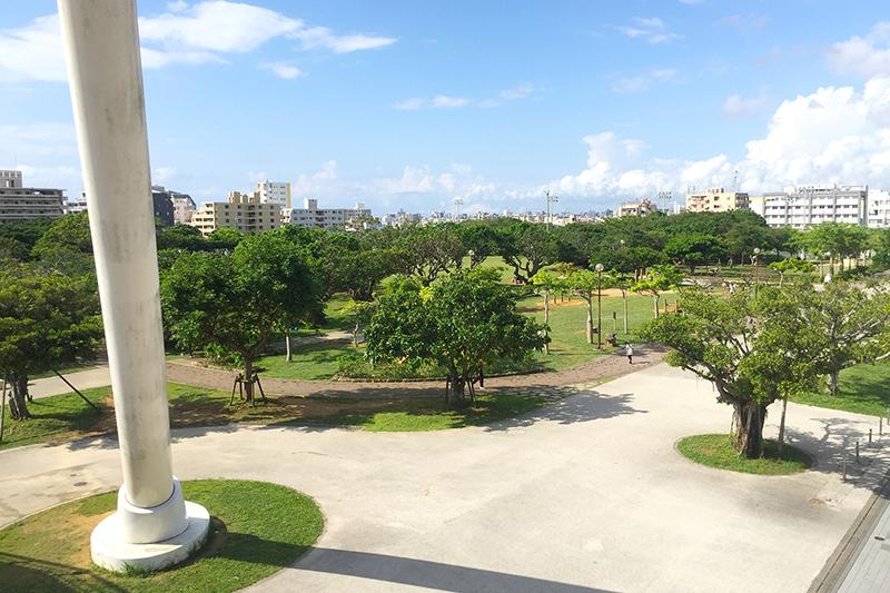 沖縄県の那覇新都心暮らし 那覇新都心公園